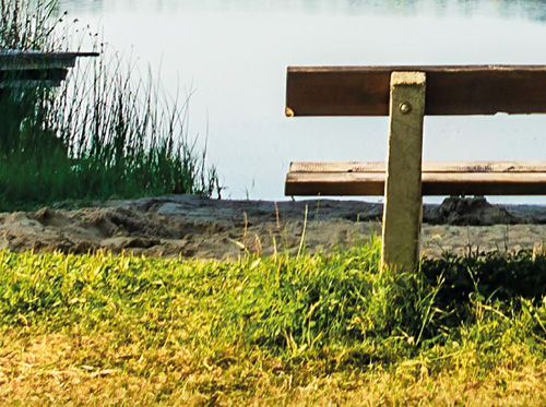 "Featured image for ""Juni 2021 | Sommerbeitrag"""